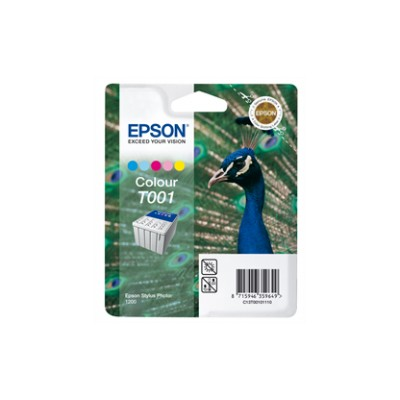 Epson T001 expired date
