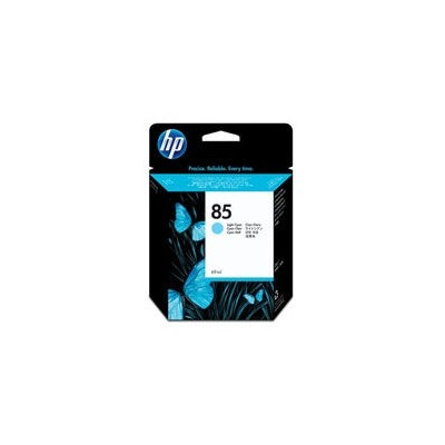 HP Printhead No.85 Light Cyan Expired date